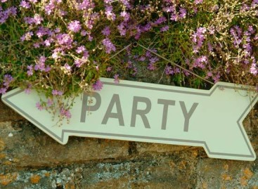 Top 10 Things to Have at a Garden Party