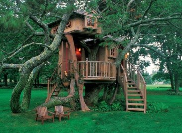 The Joys of Building a Backyard Treehouse