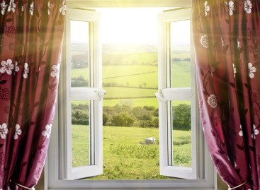 Getting the Right Window Treatments
