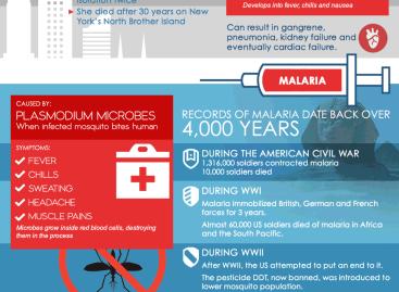 Epidemics in America [Infographic]