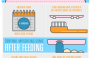 Proper Dental Hygiene For Your Kids [Infographic]